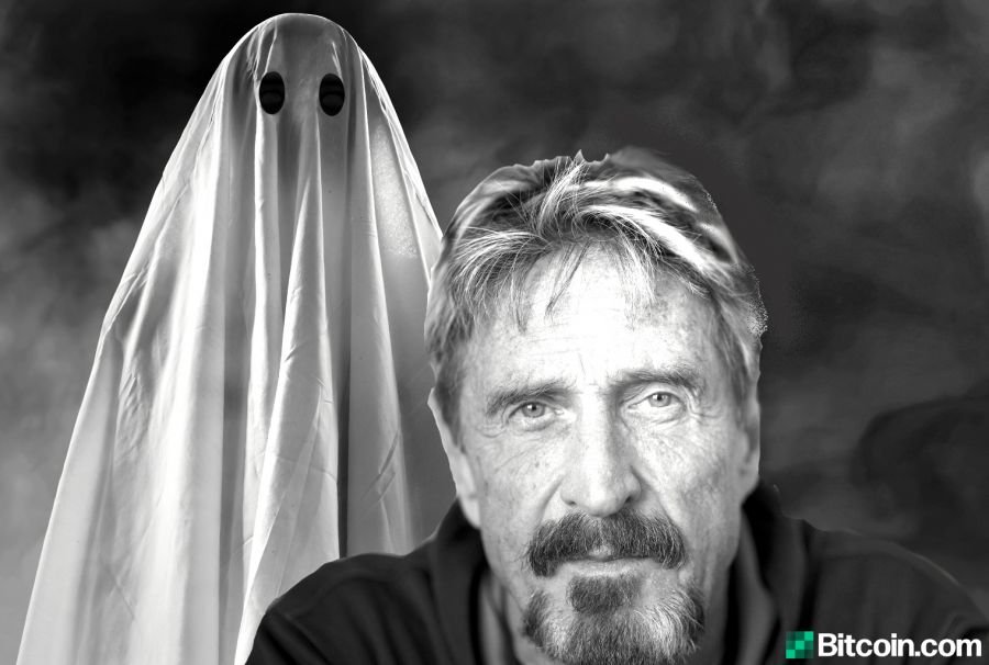 'Federal Governments Will Certainly be Incapable to Close It Down' - John McAfee to Introduce Personal Privacy Centric Crypto 4