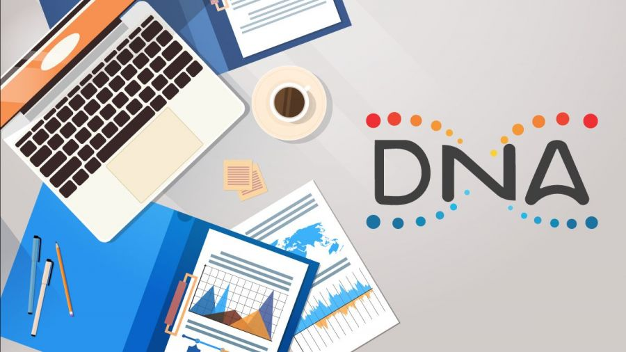Metaverse Dualchain Network Design (DNA) Proceeds Worldwide Development and also Reveals an Effective Initial Quarter in 2020 2