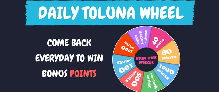 toluna daily spin wheel