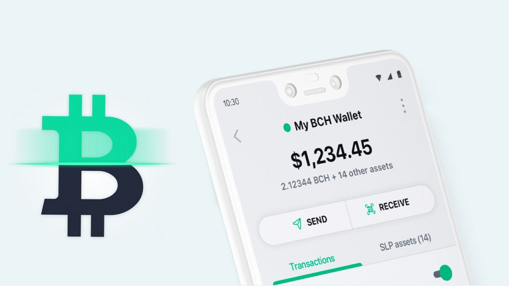Bitcoin.com Budget Users Can Currently Acquisition Greater Than $10 K Well Worth of Cryptocurrency 9