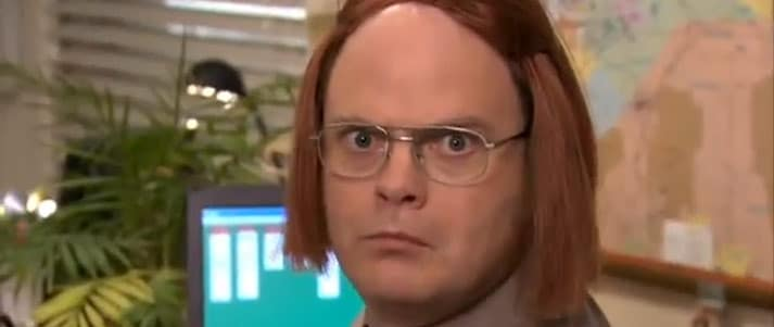 Dwight in wig from the Office
