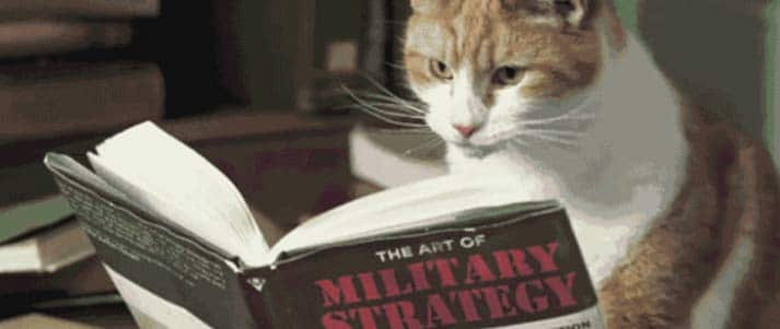cat reading 'The Art of Military Strategy'
