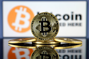 The United States Federal Government May Trigger The Following Bitcoin Fostering Wave - 11