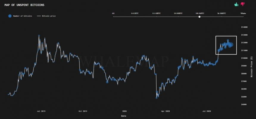"""The Variety Of Bitcoin """"Accumulation Addresses"""" Struck New Highs; Below's Why 2"""