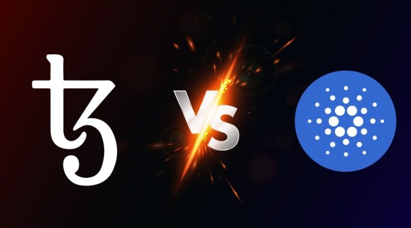 Cardano[ADA] vs Tezos[XTZ], Which Is a Much Better Long-term Financial Investment 2020? - Cryptovibes.com 14