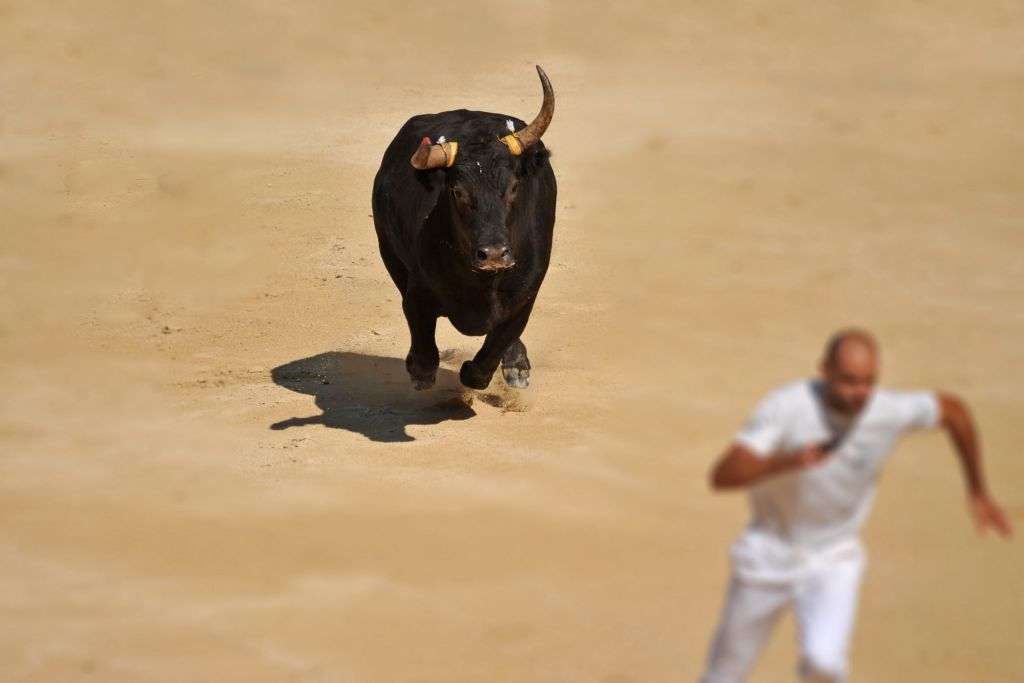Analyst: Latest Bitcoin Rally Doesn't Look Like a Bull Run 5