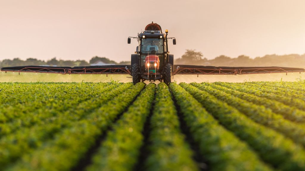 Study: A Great Deal of Return Farmers Can Not Check Out Smart Dealings In Spite Of High Danger 1
