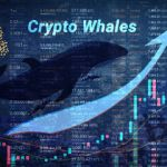 Bitcoin Whale Area Expands As Thanksgiving Nears-- Cryptovibes.com-- Daily Cryptocurrency as well as FX Information 18