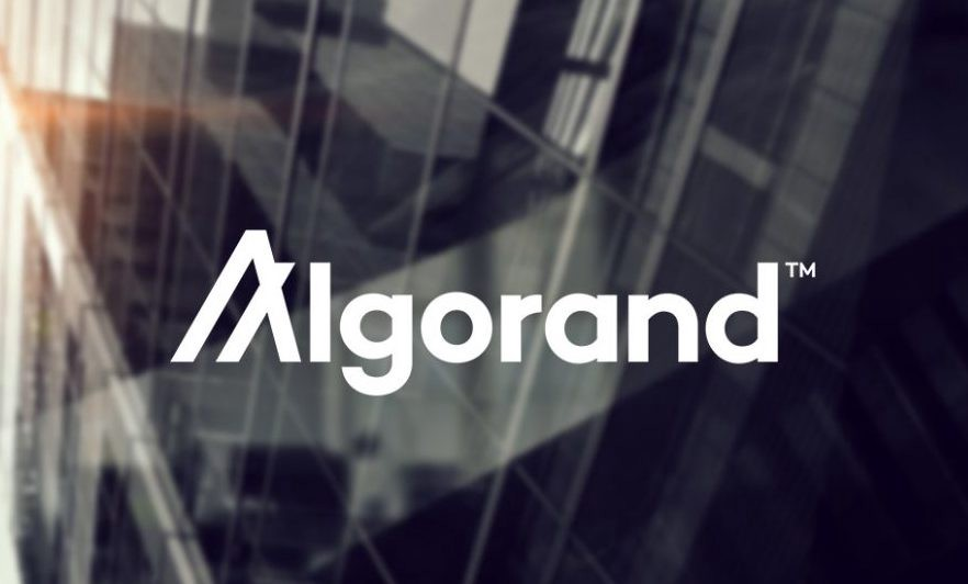 Algorand Begins A Companion Program To Boost Fostering-- Cryptovibes.com-- Daily Cryptocurrency and also FX Information 1