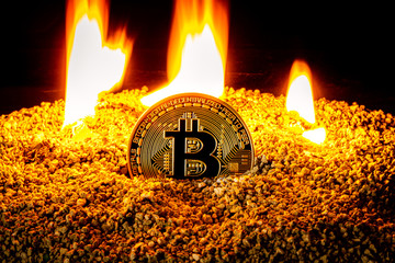 Bitcoin Market Dominated By 'Extreme Greed,' Can It Dominate $16K?-- Cryptovibes.com-- Daily Cryptocurrency as well as FX Information 1