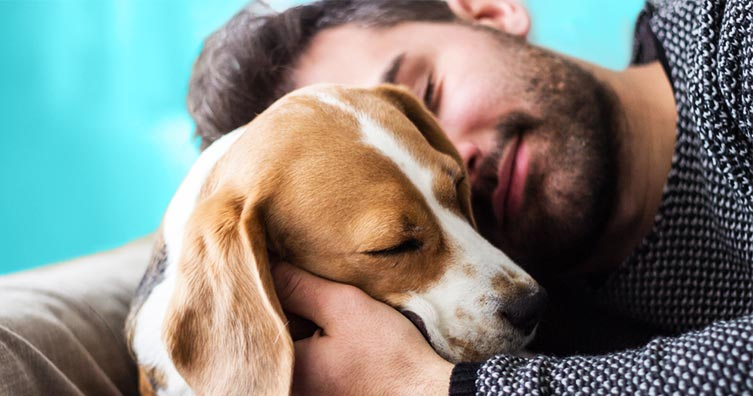 Exactly how to make money animal resting 1