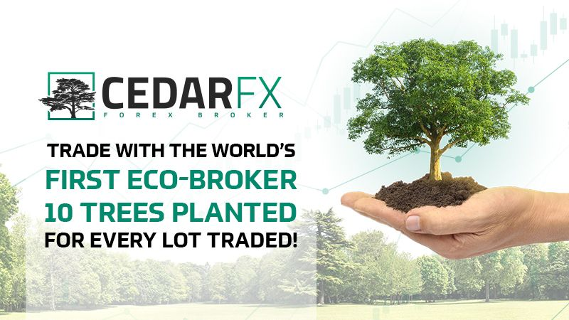 CedarFX is the Suitable Broker for Socially Aware Capitalists-- Cryptovibes.com-- Daily Cryptocurrency and also FX Information 1