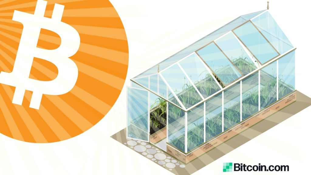 Genesis Mining Is Transforming Excess Bitcoin Datacenter Warmth Into Greenhouse Power in Sweden 1