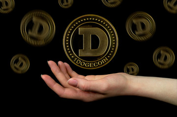 Dogecoin Withdrawals Complicated After Parabolic Price Rise-- Cryptovibes.com-- Daily Cryptocurrency as well as FX Information 1