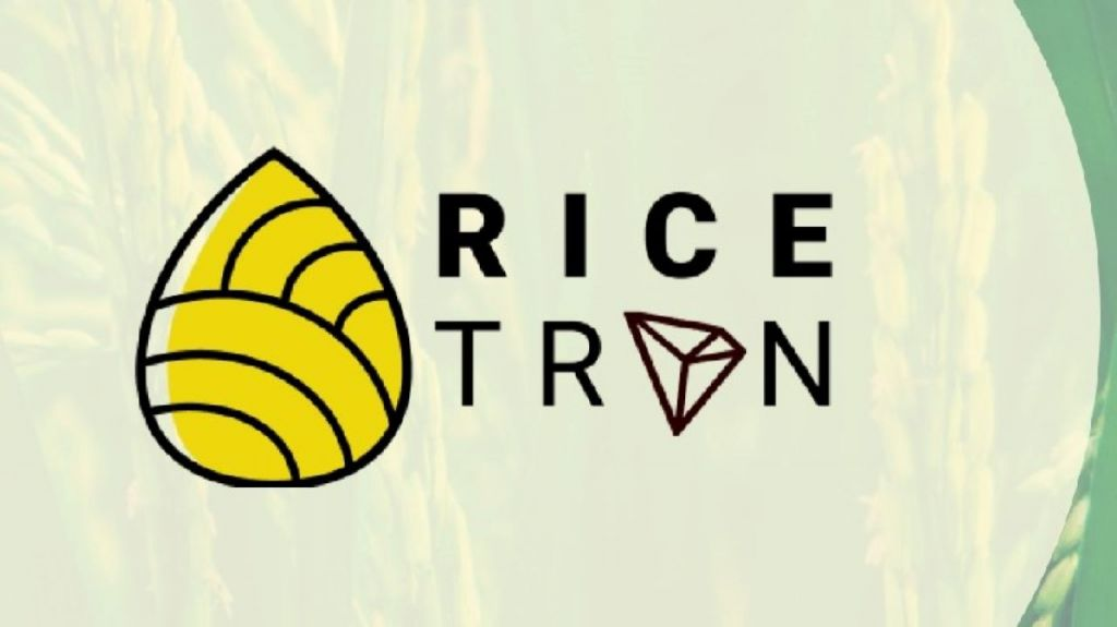 Rice-Based Stablecoin Is Being Introduced in Indonesia-- News release Bitcoin Information 7