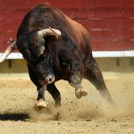 "Bitcoin Expert Sees ""Hostile"" Bull Run In The Direction Of $64,000; Right here's Why 6"