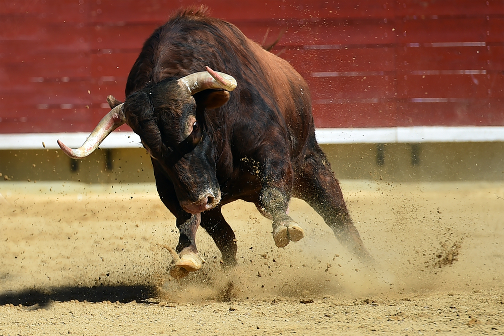 "Bitcoin Expert Sees ""Hostile"" Bull Run In The Direction Of $64,000; Right here's Why 1"
