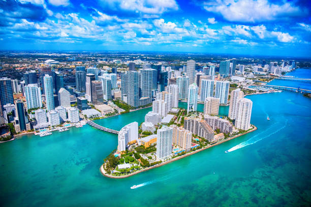 Miami Bar Currently Approves Bitcoin As Night Life Returns-- Cryptovibes.com-- Daily Cryptocurrency and also FX Information 1