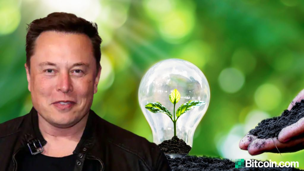 Elon Musk Persuades Miners to Type 'Bitcoin Mining Council' to Advertise Renewable Resource Use-- Mining Bitcoin Information 12