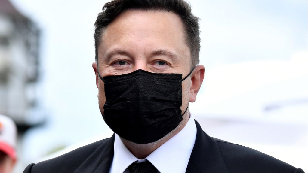 Elon Musk Invented Bitcoin, if You Ask Fifty Percent of Australians Surveyed by Finder-- Included Bitcoin Information 1