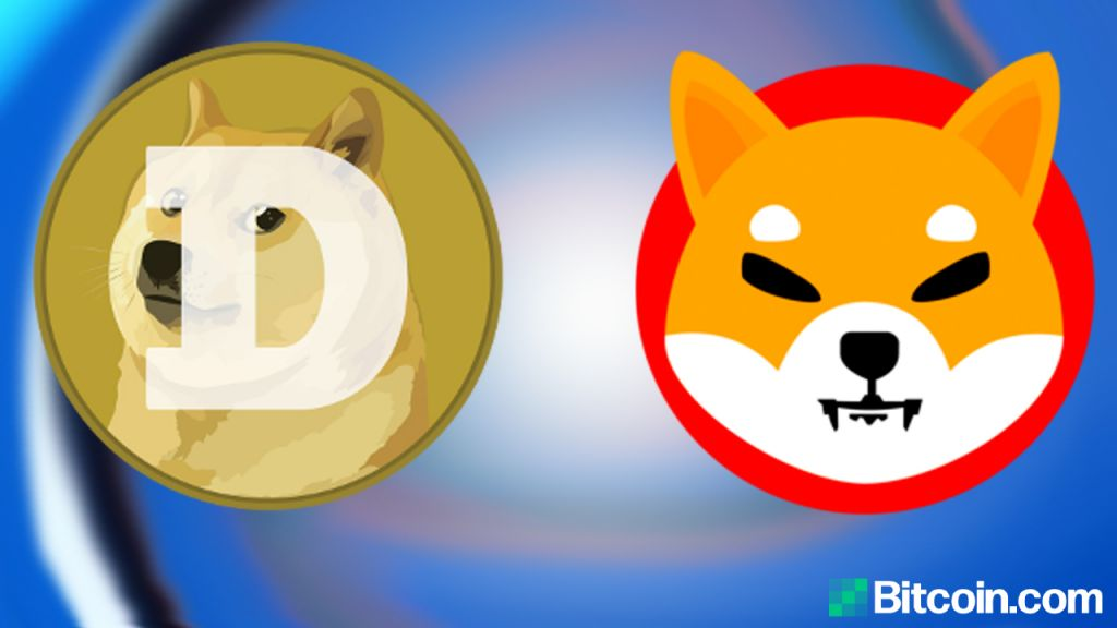 SHIB vs. DOGE - That Is the Leading Pet in Crypto Land?-- Altcoins Bitcoin Information 1