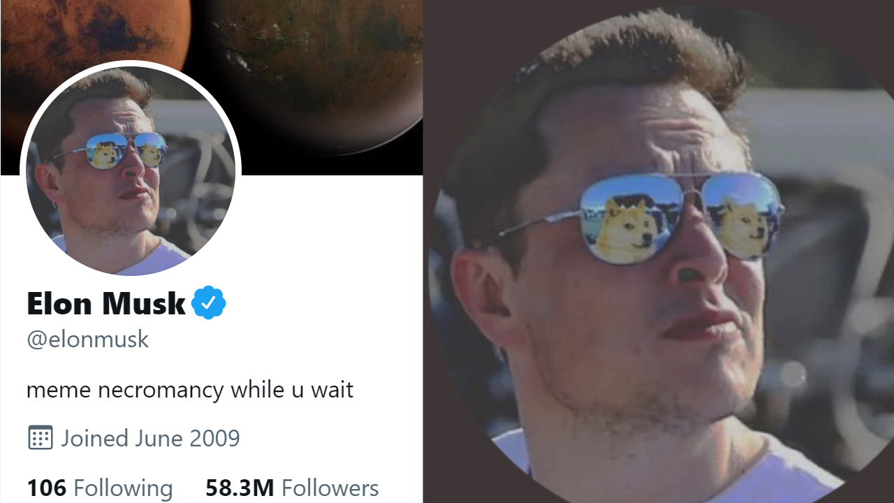 Elon Musk Declares Assistance for Dogecoin, Adjustments Account Photo-- DOGE Trading Quantities Leapt 1,250% in Q2-- Altcoins Bitcoin Information 2