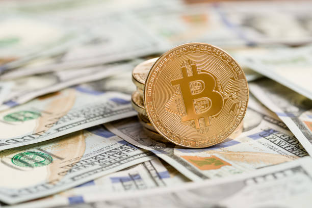 Crypto Professionals Claim Bitcoin Is Changing Fiat Money Within two decades-- Cryptovibes.com-- Daily Cryptocurrency as well as FX Information 1