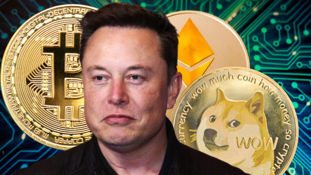 Elon Musk Discloses Spacex Has Bitcoin, He Directly Has BTC, Ethereum, Dogecoin-- 'I Might Pump however I Do Not Unload'-- Included Bitcoin Information 1
