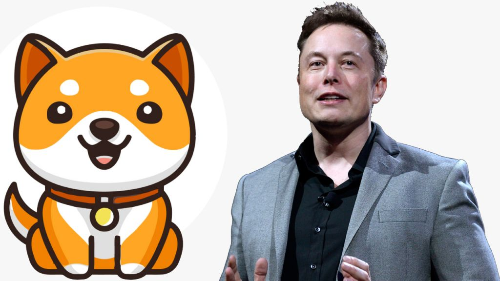 Elon Musk Tweet Sends Out New Child Doge Coin Rising-- Meme Symbol's Daily Gains Leap 228%-- Bitcoin Information 1