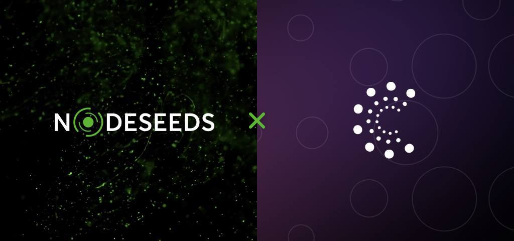 Nodeseeds Launches Three-Tier Subscription to Make Sure Openness as well as Fair Appropriation of Projects-- News release Bitcoin Information 1