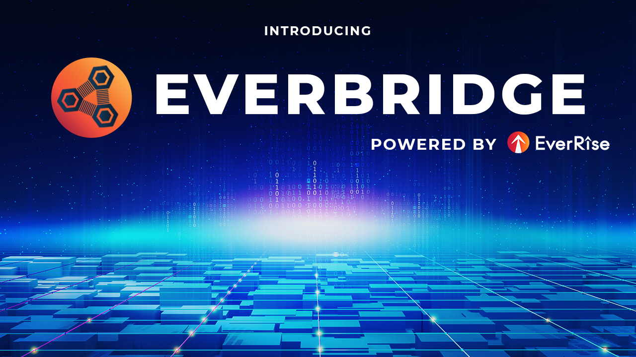 EverRise Brings Buyback Symbol and also Ecological community of dApps to Polygon and also Ethereum-- News release Bitcoin Information 1