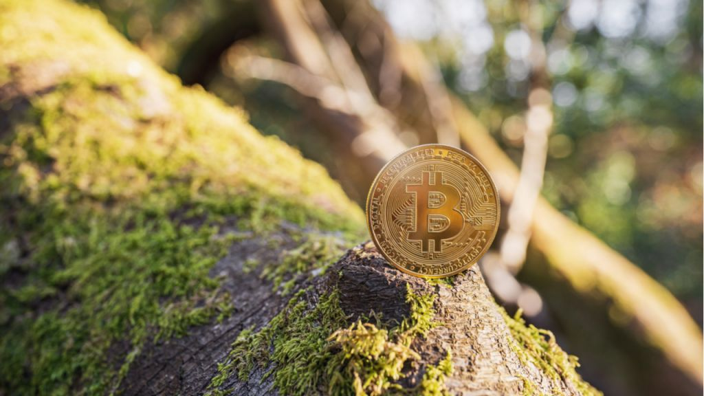 Cryptocurrency Likely to Be Even More Eco-friendly Than Standard Financial institutions-- News release Bitcoin Information 8
