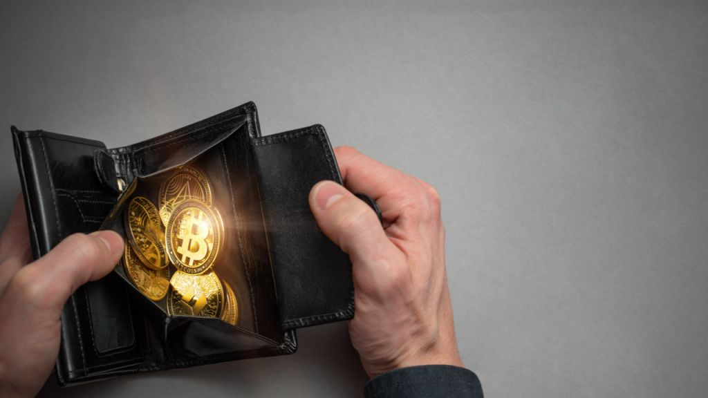 Exactly how to Recoup a Lost Blockchain Budget Password 1